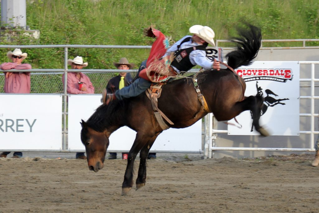 Cloverdale Rodeo 8