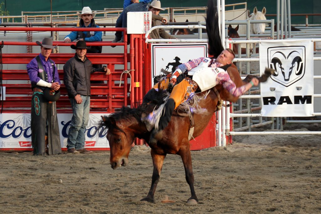 Cloverdale Rodeo 9