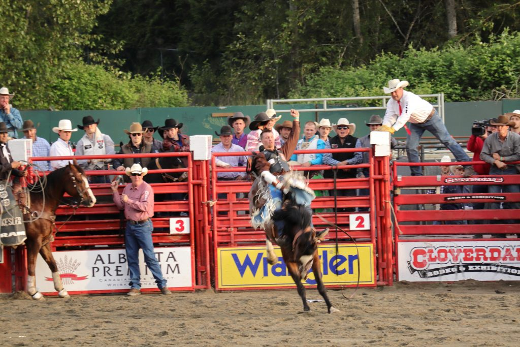 Cloverdale Rodeo 10