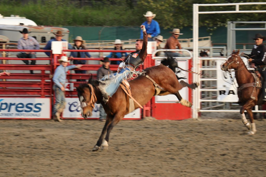 Cloverdale Rodeo 12