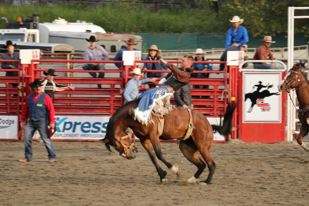 Cloverdale Rodeo 13