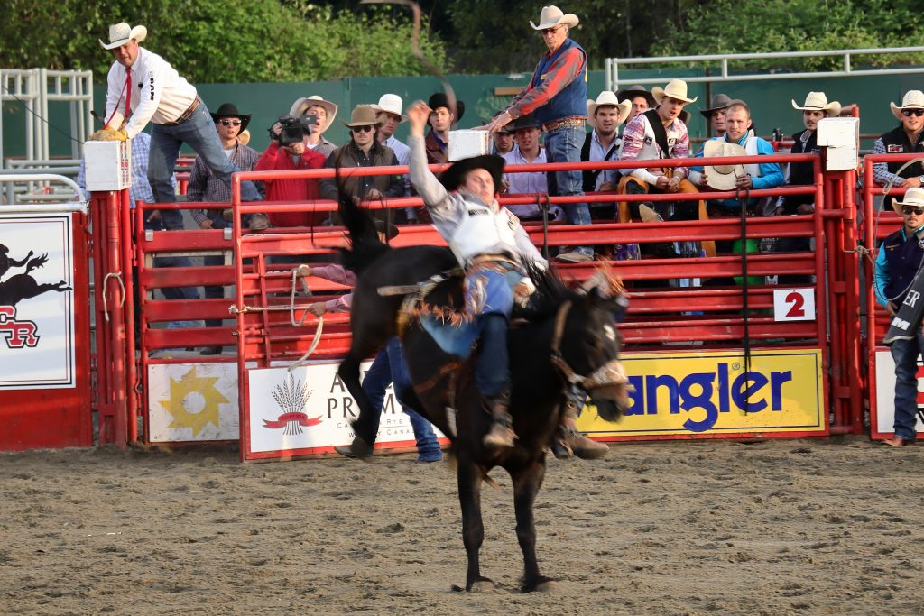 Cloverdale Rodeo 15