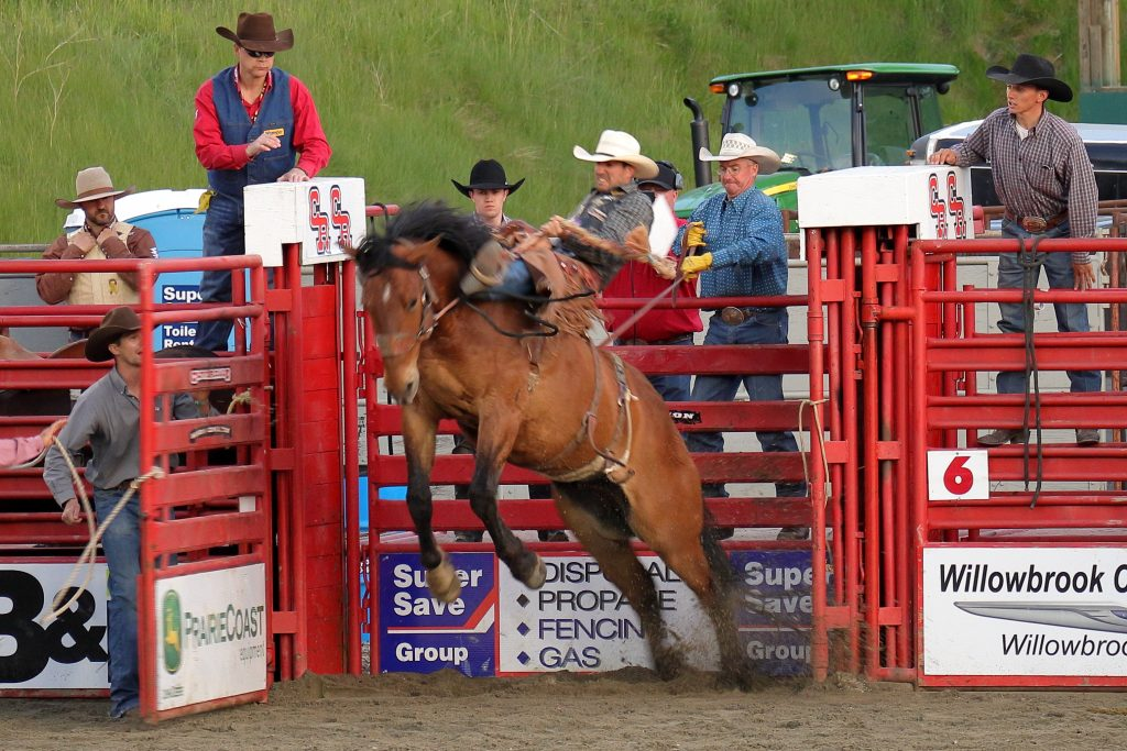 Cloverdale Rodeo 19