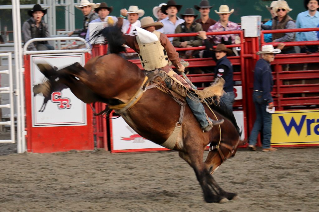 Cloverdale Rodeo 21