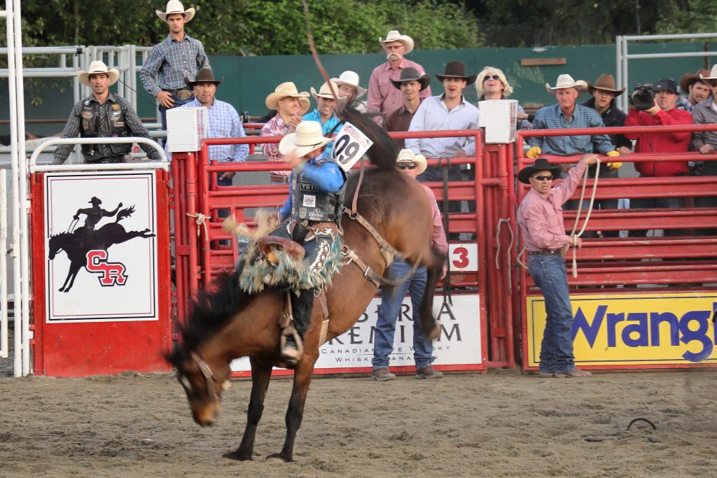 Cloverdale Rodeo 24