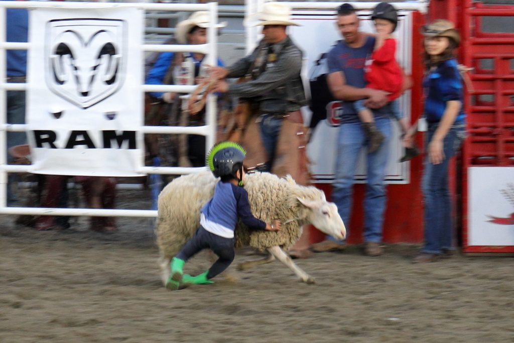 Cloverdale Rodeo 25