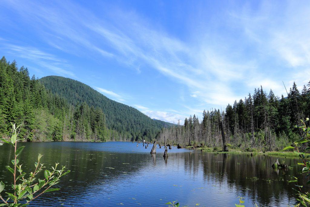 Diez Vistas Trail 3