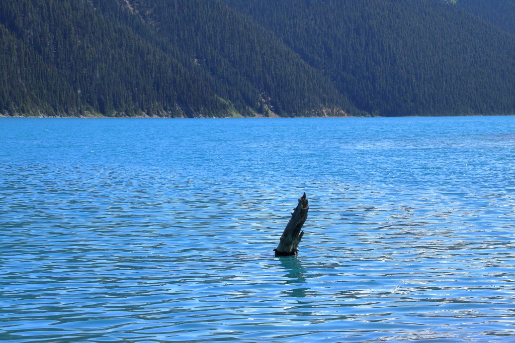 Garibaldi Lake 10