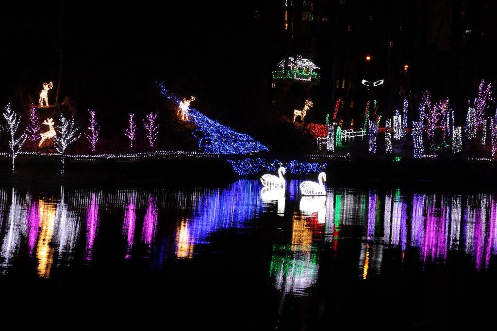Lights at Lafarge Lake - Coquitlam 5