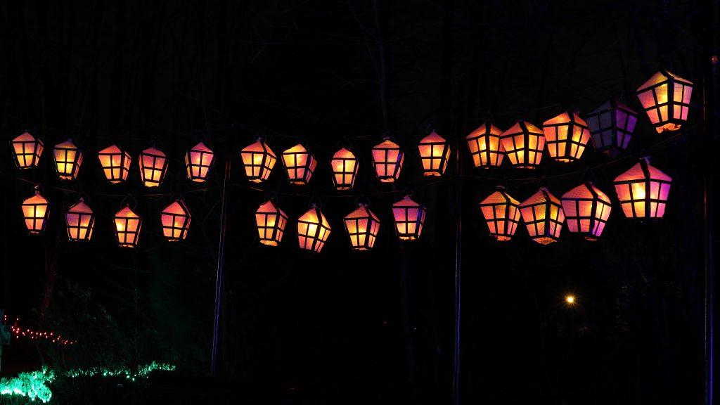 Lights at Lafarge Lake - Coquitlam 11