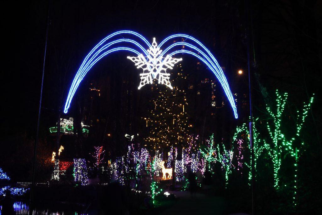 Lights at Lafarge Lake - Coquitlam 20