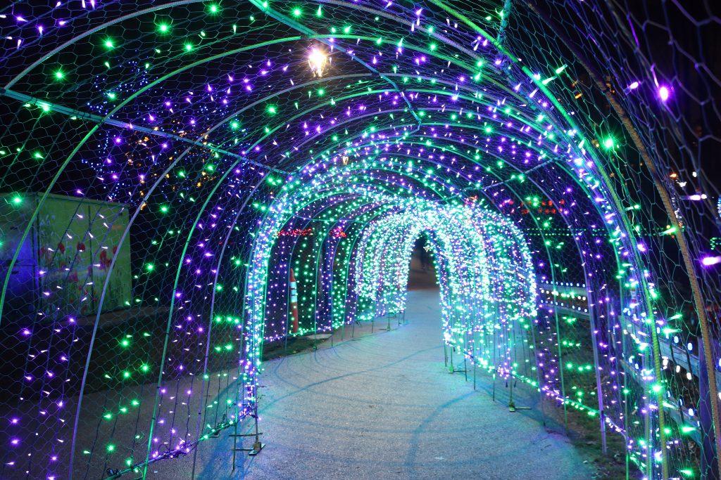 Lights at Lafarge Lake - Coquitlam 13