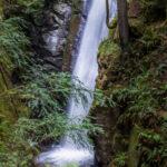 Cypress Falls 4