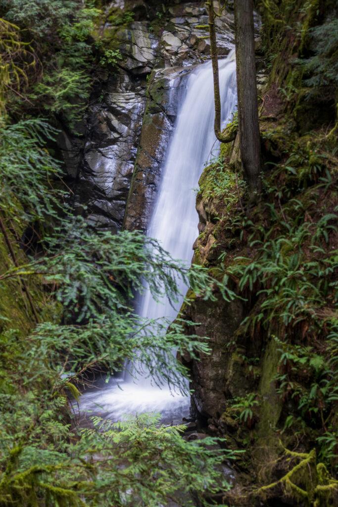 Cypress Falls 1